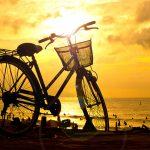 Hướng dẫn chụp ảnh ngược sáng – Clip hướng dẫn